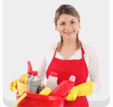 Home Cleaning Secrets - Cleaning Tips